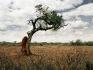 L'arido paesaggio delle terre Borana è caratterizzato dalla presenza di numerosi termitai spesso molto alti.