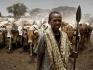 Nell\'organizzazione sociale dei Borana ad ogni età corrisponde un preciso compito all'interno delle attività pastorali. Un giovane pastore conduce la sua mandria al pascolo nei campi bruciati dall\'aridità.